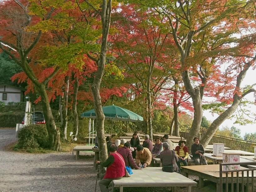 大平山 紅葉ドライブ